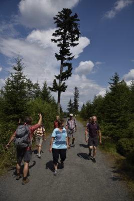 Wandern Auf dem Spicak (1202 m)