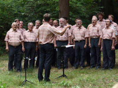 Bergfinken Singen im Schwedenpark (Foto: LiaBe)